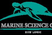 zminiTurtle-Logo